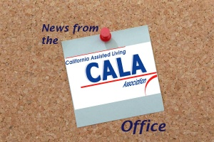 News from the CALA Office